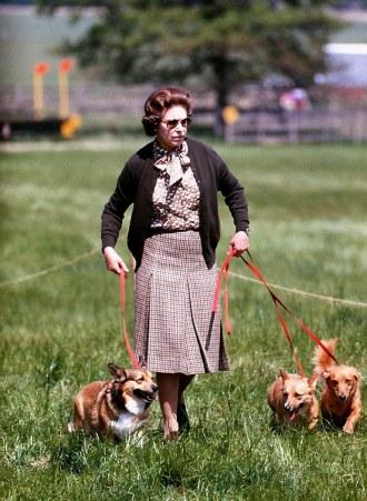 queens-corgis-history-dogs-ss08
